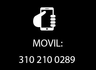 celular-2